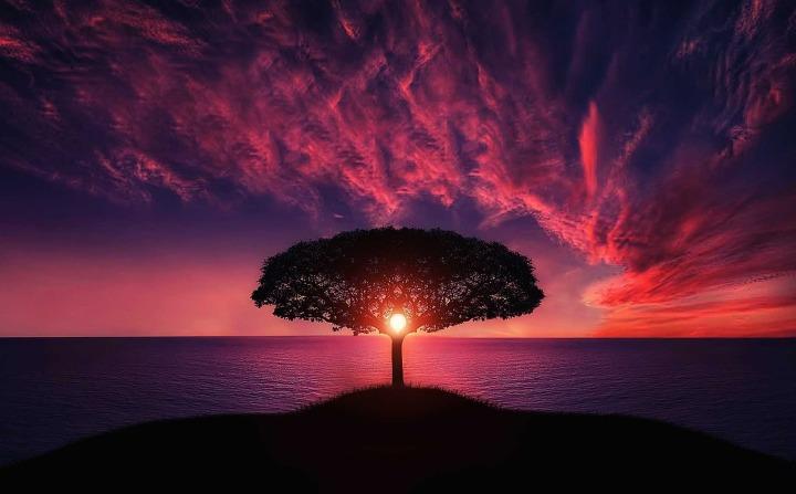 Gratitude: A Portal toAbundance